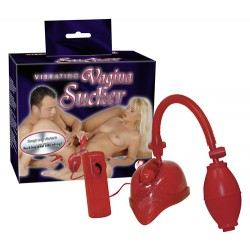Handy vacuum pump makes the vulva Vagina Sucker red
